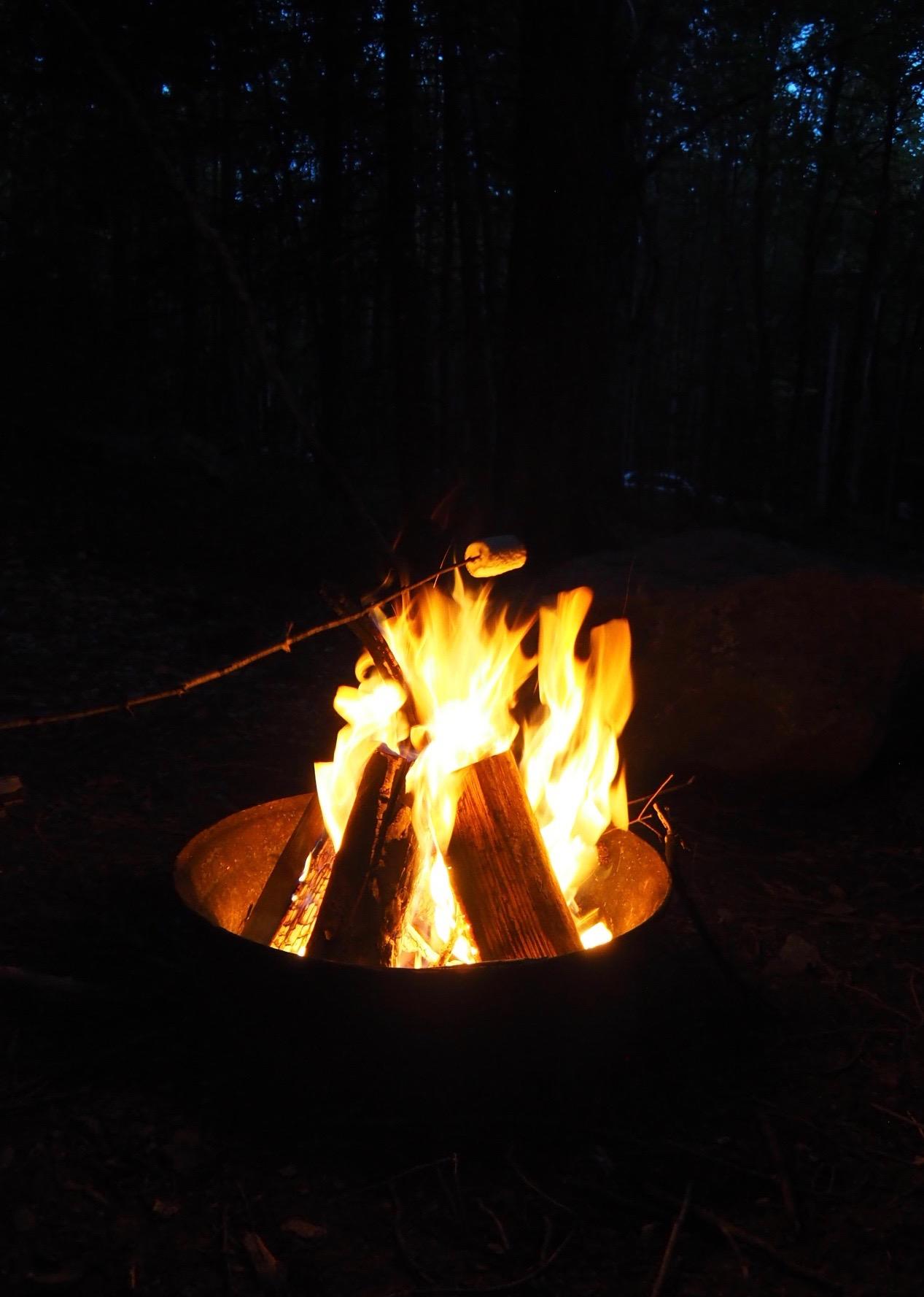 L'incontournable feu de camps (avec des guimauves, bien sûr)!