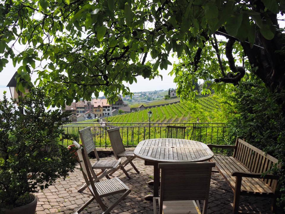 Chez Blaise Duboux, qui fait partie des quelque 200 vignerons de la région de Lavaux. Sa famille cultive les vignes depuis plus de 600 ans !